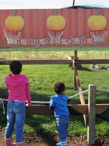 Pumpkin Patch Games